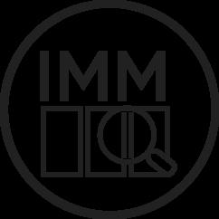 IMM – Egyedi Modulfelügyelet